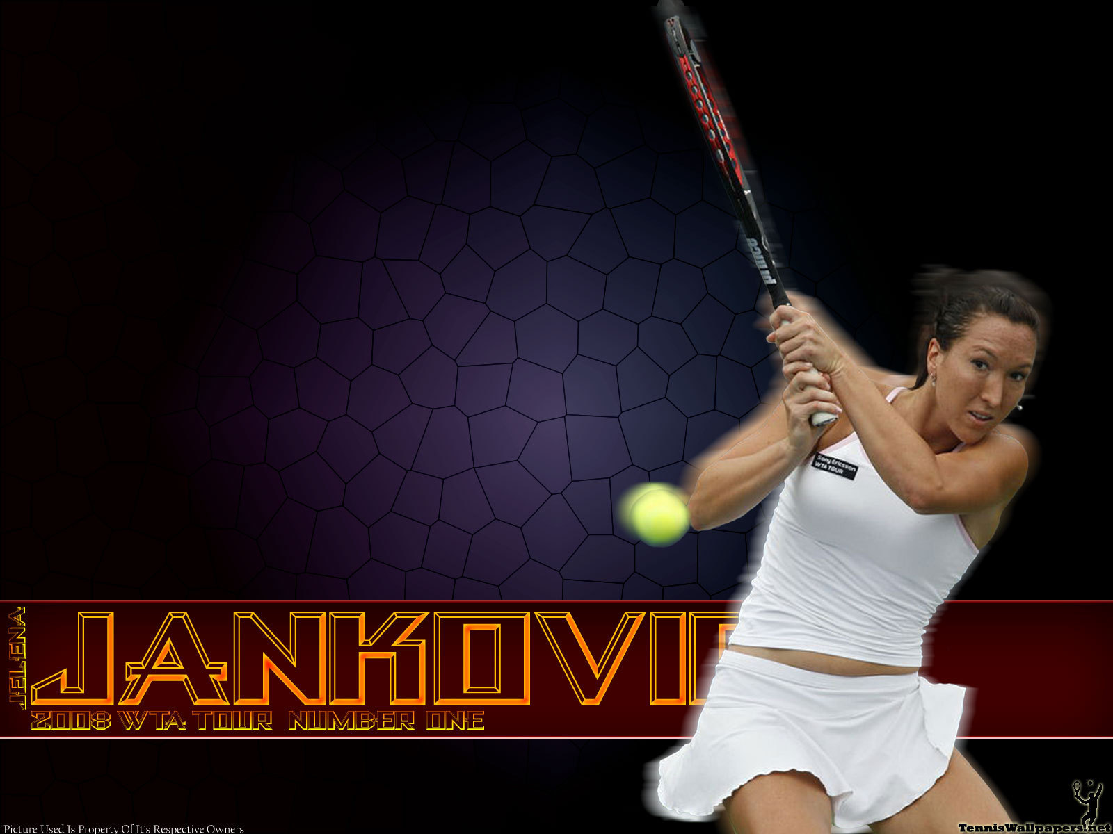 Jankovic Pictures 67