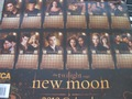 new moon calendar - twilight-series photo