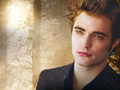step 01 - Edward Proyect =) - twilight-crepusculo wallpaper
