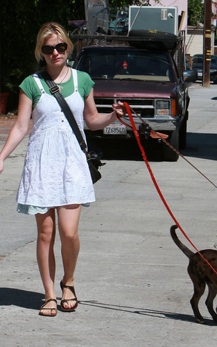 Anna walking her Anjing