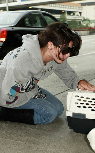 Ashley Leaving LAX
