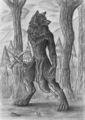Black werewolf - mythical-creatures photo