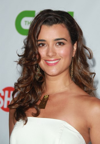Cote de Pablo fond d'écran containing a portrait titled CBS TCA party