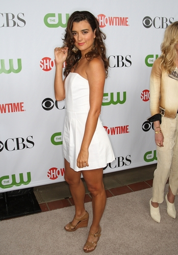 Cote de Pablo fond d'écran possibly containing bare legs, hot pants, pantalon chaud, and a cocktail dress entitled Cote