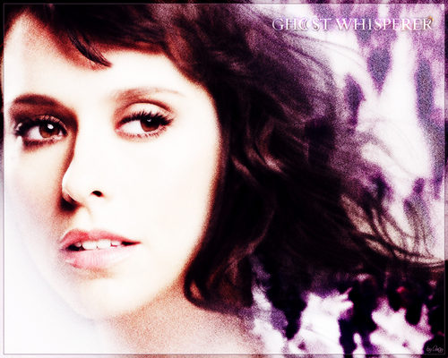 Ghost Whisperer wallpaper with a portrait called Ghost Whisperer