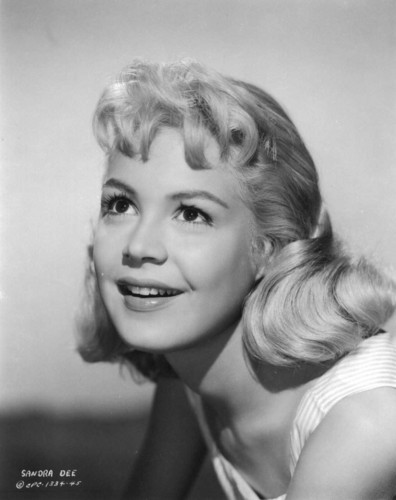 Sandra Dee wallpaper probably containing a portrait entitled Gidget