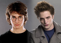 Harry Potter VS Twilight - harry-potter-vs-twilight photo
