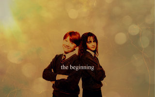 Harry,Ron and Hermione