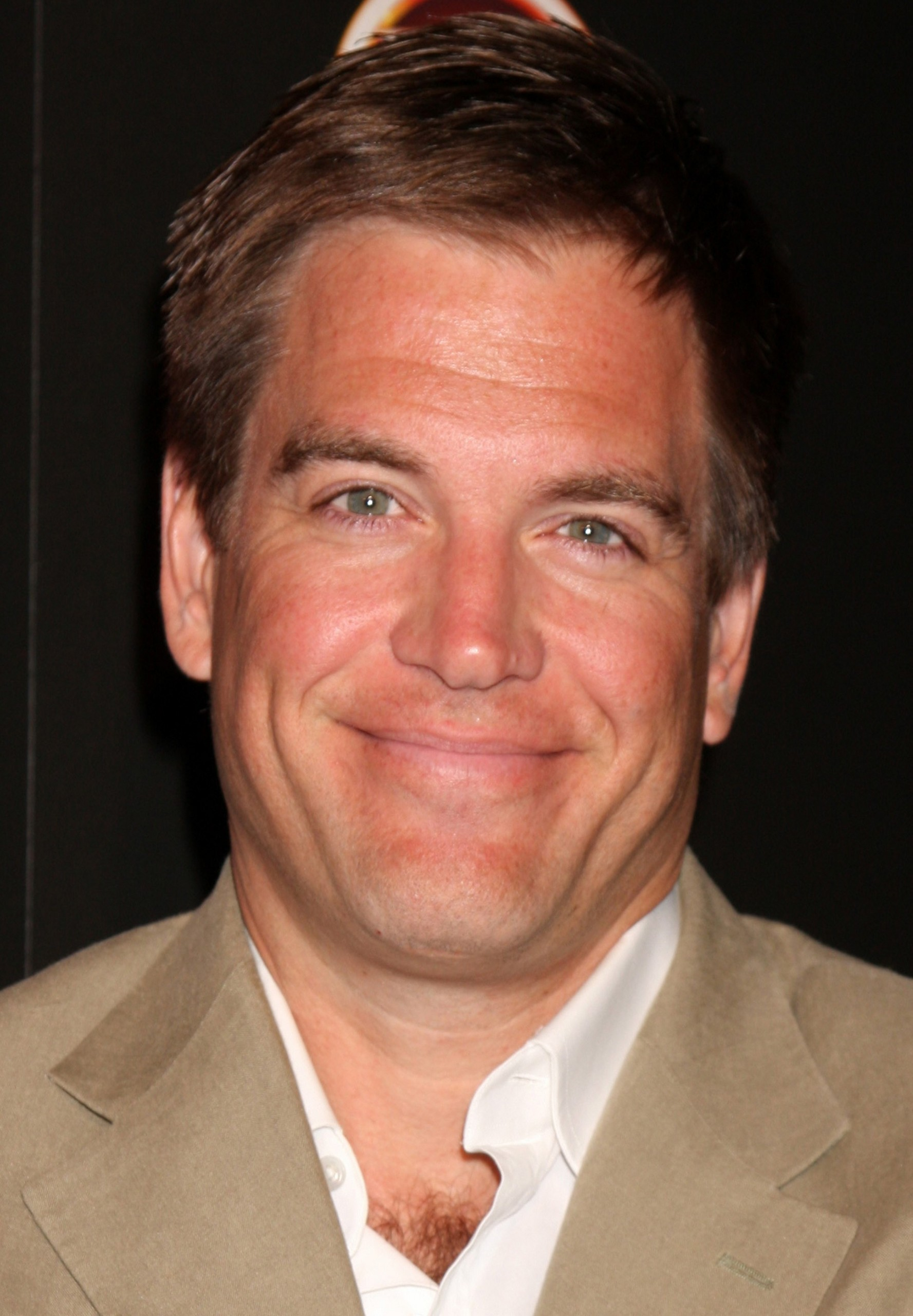 michael weatherly and cote de pablo are dating