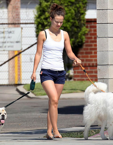 Olivia, Walking Her Dogs