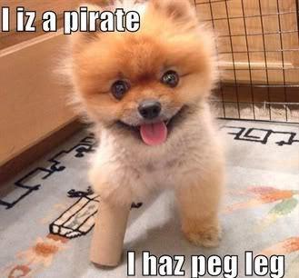 Peg-leg कुत्ते का बच्चा, पिल्ला