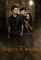Polish New Moon Poster - international-twilight photo