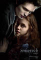 Polish Twilight Poster - international-twilight photo