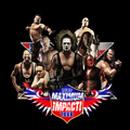 Sting & TNA Superstars - sting-wcw fan art
