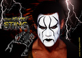 Sting wallpaper by bugbytes - sting-wcw photo