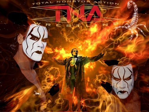 Sting WCW wallpaper containing a fire and anime entitled TNA Sting by Logan