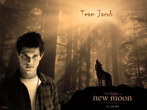 Taycob wallpaper containing a street, a sunset, and sunniness called Team Jacob Poster (fan made)