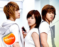 Tiffany and DBSK - girls-generation-snsd photo