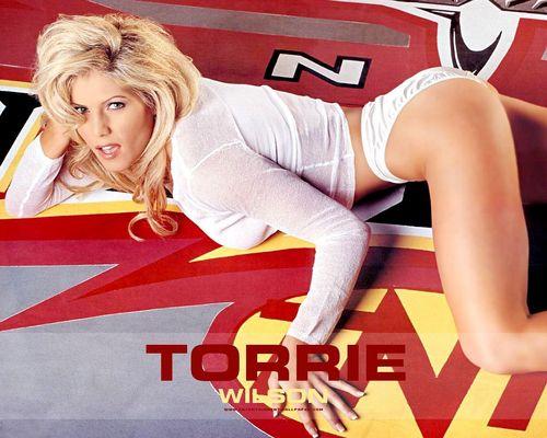 Torrie Wilson karatasi la kupamba ukuta titled Torrie Wilson