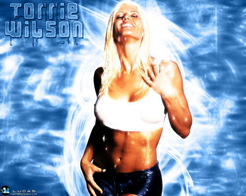 Торри Уилсон Обои possibly containing a bikini, a swimsuit, and attractiveness called Torrie Wilson