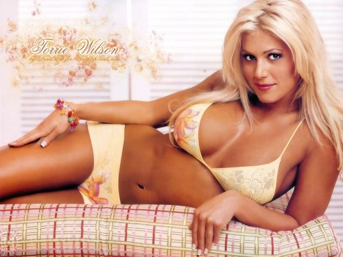 Torrie Wilson achtergrond possibly with attractiveness, a bikini, and skin called Torrie Wilson