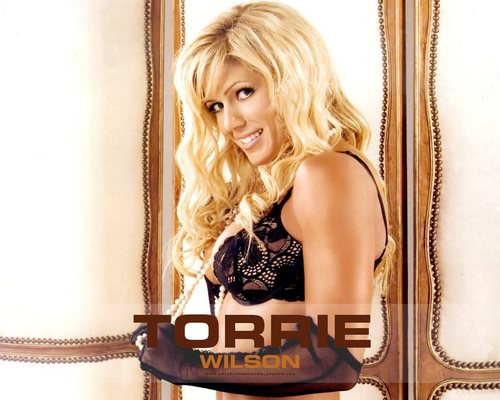 Torrie Wilson پیپر وال probably containing attractiveness and a portrait called Torrie Wilson