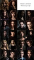 Twilight vs New Moon - twilight-series photo