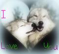 I प्यार आप !