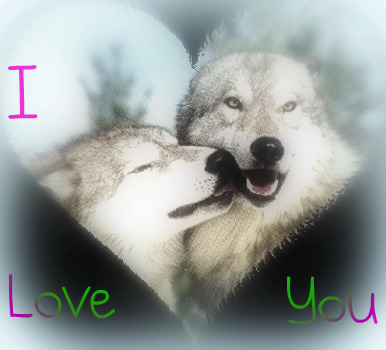 Wolves wallpaper titled I Love You !