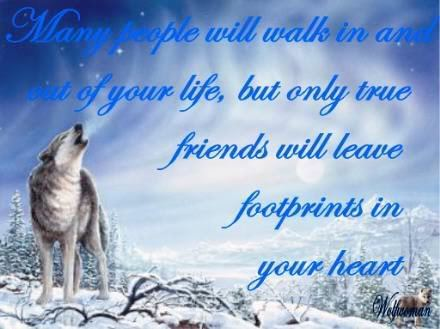 Wolves And Friendship
