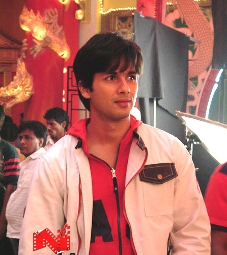 Shahid Kapoor Images Hes Damn Cool Wallpaper And Background Photos