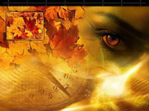 Autumn's eye