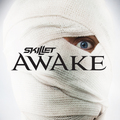Awake - skillet photo