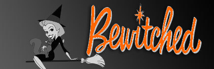 Bewitched Banner