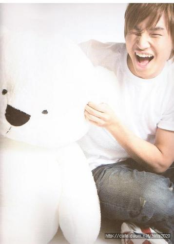 D-Lite Teddy
