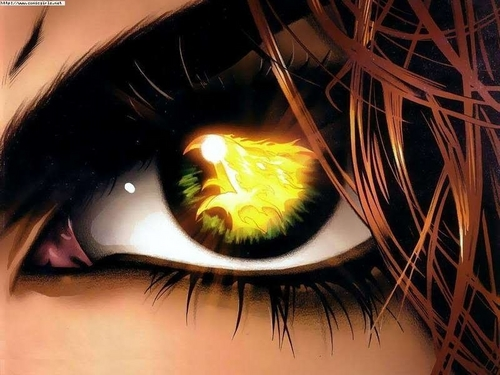 Fire eyes - eyes Photo