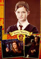 Ginny  - weasleys photo