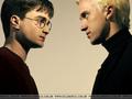 Harry & Draco HBP