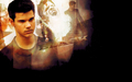 Jacob Black - taycob wallpaper