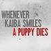 Kaiba's Smile