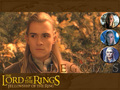 Prince Legolas  - legolas-greenleaf wallpaper