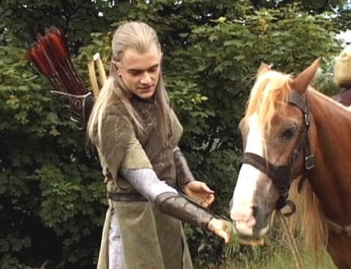 Legolas Greenleaf wallpaper containing a horse wrangler, a dressage, and a racehorse entitled Prince Legolas