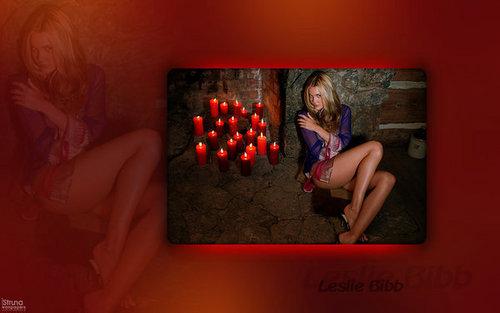 Leslie Bibb