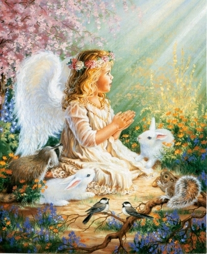 Little Angel and Friends - angels Photo