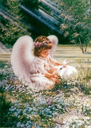Little Angel and Rabbit