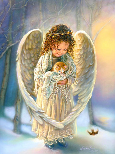 Angels wallpaper probably containing a carrier pigeon titled Little Angel with Kitten