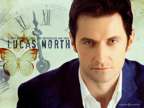 Richard Armitage wallpaper titled Lucas North- I only ask to be free