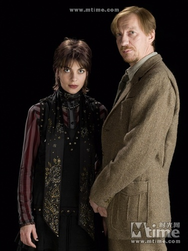 Lupin and Tonks in HBP