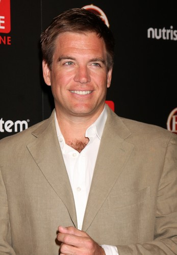 Michael Weatherly wallpaper containing a business suit, a suit, and a double breasted suit entitled Michael