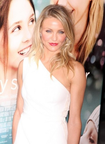 My sister's keeper wallpaper with a portrait titled My Sister's Keeper NY Premiere